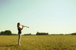 Stichting Eigen Muziek Instrument, SEM